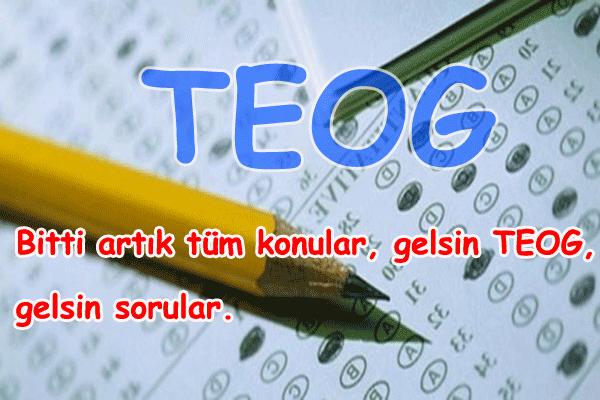 TEOG İle İlgili Sözler