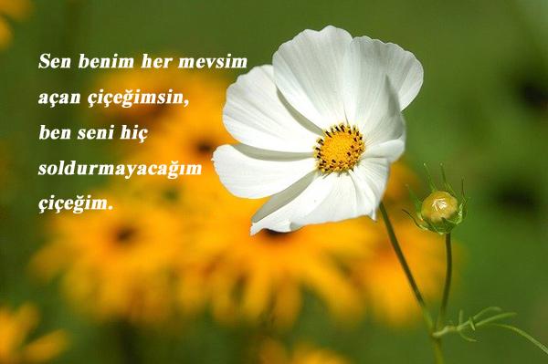Çiçek İle İlgili Sevgiliye Sözler