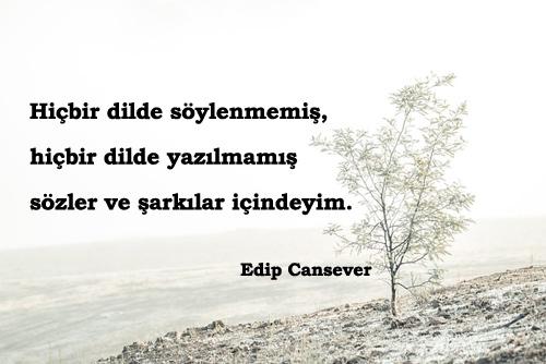 Edip Cansever Sözleri
