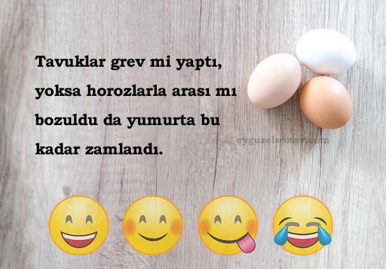 Yumurta İle İlgili Sözler
